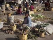 Sunshine - Market Lasso, 1991