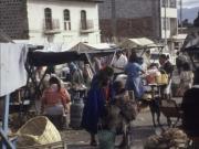 Market - Lasso 1991