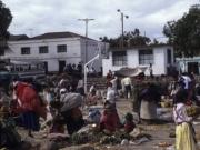 Market Lasso 1991