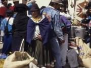 Market Ecuador 1991